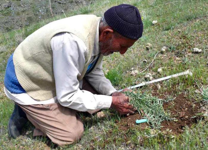 kangar men Sekolah menengah kebangsaan agama (p) alawiyah kangar 2006 - pertukaran pengetua – ustaz shamsudin bin sharkosi ke sek men keb agama al-manshoor (l.