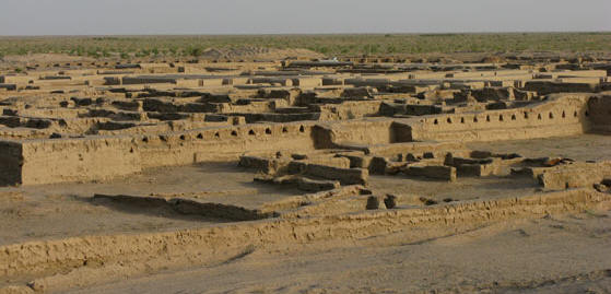 Excavated Gonur north complex